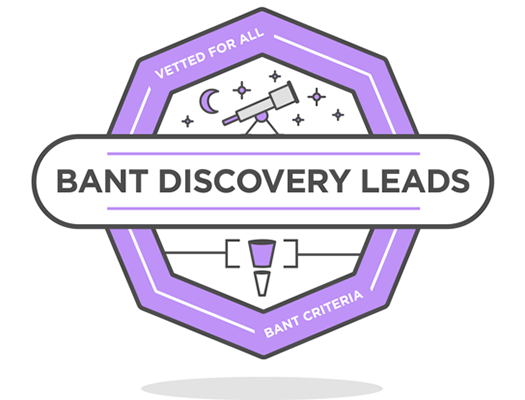 BANT Discovery Leads