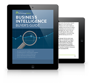 Business Intelligence Software Buyers Guide PDF inside iPad