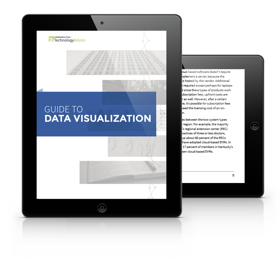 Data Visualization Buyer's Guide PDF inside iPad