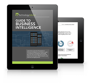 Beginner's Guide to Busines Intelligence Software PDF inside iPad