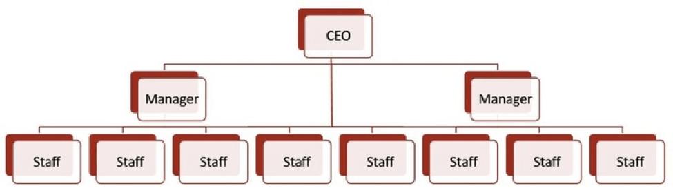 Flat organizational chart example.