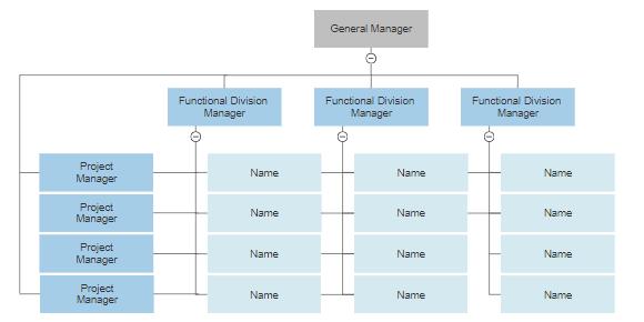 Matrix organizational chart example.